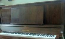 Bán đàn piano YAMAHA MC10WnC