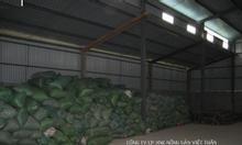 Cung cấp Sắn lát khô phục vụ sản xuất Cồn