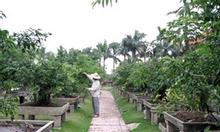 Tiền Giang - Bán Đất Vườn và Đất Ruộng
