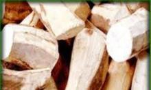 Cần mua 100.000 tấn sắn lát cồn giá FOB-230USD/tấn
