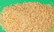 Gạo mầm vibigaba, gạo lức