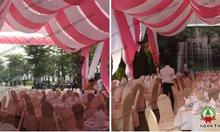Tổ chức đám cưới ngoài trời, dam cuoi ngoai troi