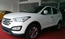 Hyundai santafe phiên bản đặc biệt (full option)