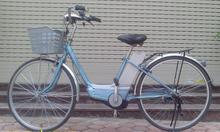 Xe đạp điện nhật bãi