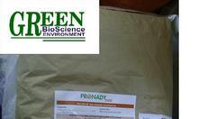 Nguyên liệu Pronady Betagluca Pháp cho thủy sản