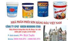 Sơn chống nóng CN05 giá rẻ LH 0909538479 Tuyền