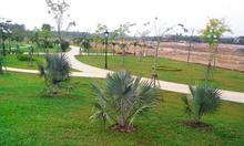 [Mới Mới Mới] Đất ngay cạnh sân golf giá 330tr