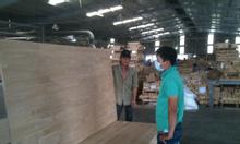 Bán gỗ ghép thông-ánh dương