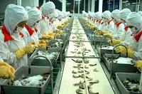 Xuất khẩu lao động 2014 làm Chế Biến