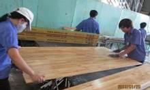 Nhận gia công sơn UV Ván sàn, Nhà máy Quận 12