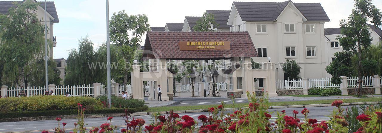 Biệt thự Vinhomes ưu đãi đầu xuân chỉ từ 53 triệu