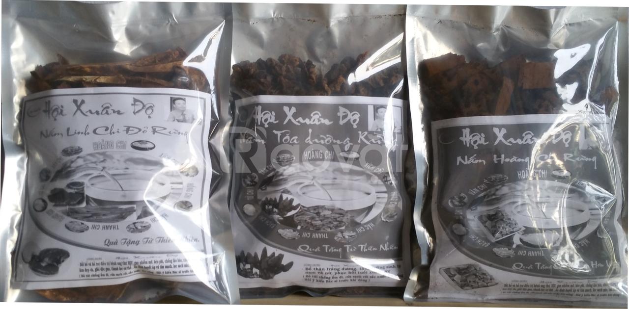 Nấm linh chi đỏ rừng gói 0,5 kg giá 450.000 VNĐ