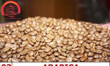 Cà phê Arabica – Số 3 cà phê với vị đắng đặc trưng