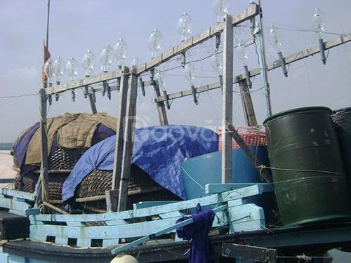 Đèn chiếu sáng dùng cho tàu biển câu cá mực