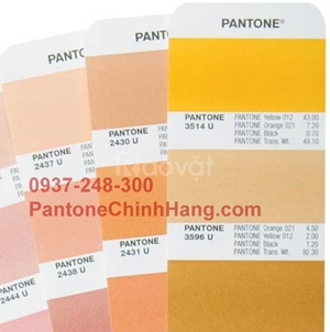Cung cấp Pantone cho ngành in