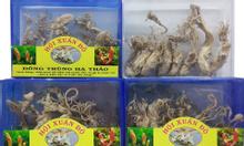 Đông trùng hạ thảo thiên nhiên và nuôi trồng
