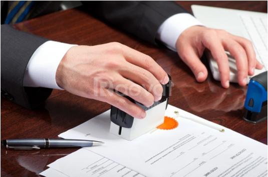 Nhận báo cáo thuế tại nhà