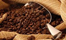 Cafe Buôn Ma Thuột, cafe ngon, cafe làm quà Tết