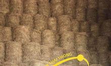 Chuyên sản xuất và cung cấp rơm cuộn