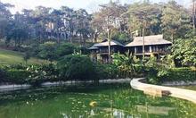 Cocobay Resort Đà Nẵng đẳng cấp 5 sao