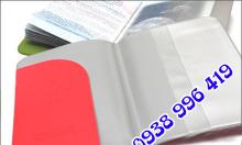 Bìa nhựa trong suốt, bìa đựng visa hộ chiếu