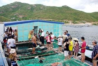 Tour bắn cá Nha Trang