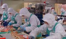 Tuyển nam nữ sản xuất bánh kẹo