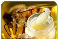 Mật ong,sữa ong chúa, phấn hoa, dầu dừa