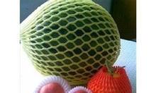 Mút bọc trái cây, xốp bọc trái cây