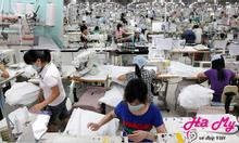 Xưởng may đồ lót xuất khẩu Hạ My thương hiệu Việt