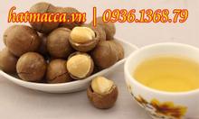 Hạt macca mua ở đâu tại Nghệ An. Hạt Mắc Ca Úc
