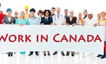 TUYỂN DỤNG LAO ĐỘNG LÀM VIỆC TẠI CANADA