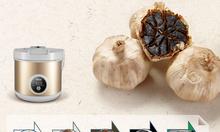 Máy làm tỏi đen gia đình Sunca Rẻ nhất thị trường