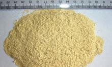 Bột tỏi nguyên chất, số lượng lớn - Hoàng Phúc Thịnh