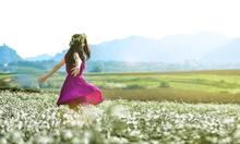Du Lịch Mộc Châu thiên đường hoa tháng 10,11