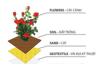 Vỉ nhựạ Draincell dùng làm vườn trên sàn bêtong