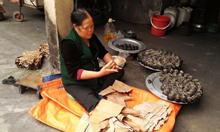 BánhGai Bà Minh, Bánh gai ngon nhất Hà Nội