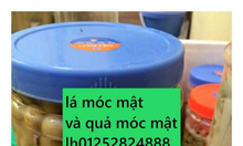 mua lá móc mật ở hà nội tp hồ chí minh 0125282488
