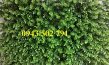 Tấm cỏ nhựa treo tường, cỏ miếng dán tường