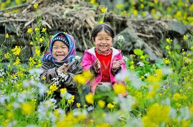 Mai Châu, Mộc Châu những mùa hoa - Chỉ với 950K