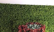 tấm cỏ nhựa treo tường, cỏ miếng treo tường