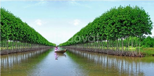 Haidangtravel Tour Cà Mau  2N2D