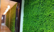 cỏ,lá,cây nhựa tấm treo tường, làm backsdrop