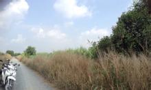 Cần bán 3 lô đất xã lê minh xuân huyện bình chánh