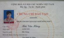 Đào Tạo Chứng Chỉ Lái Xe Nâng Tp. Hồ Chí Minh