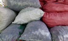 Cần mua cau nhân luộc (Cau phế của Trung Quốc)