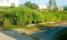 Đất trồng cây lâu năm0908.357.369 Lê Anh