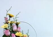 học cắm hoa nghệ thuật ở Đà Nẵng, Hội An
