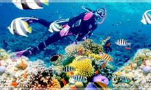 Du lịch Đảo Ngọc PHÚ QUỐC 30-4 Bao Trọn Vé Máy Bay