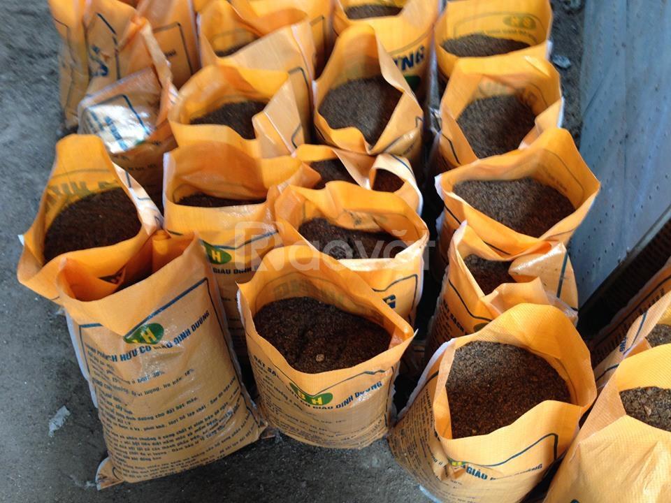 Đất sạch hữu cơ Ba Hưng, đất trồng cây